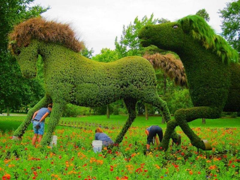 Müthiş! Bahçe Sanatı
