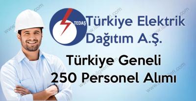 TEDAŞ 21 Şehirde bulunan müdürlüklerine 250 Sürekli İşçi alımı yapıyor